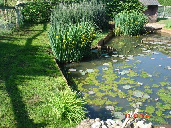 Parc zoologique le jardin des b tes for Entretien jardin tarif horaire