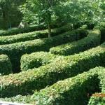 Labyrinthe végétal – Jardin des Bêtes